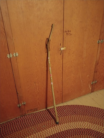 Walking Stick Picture
